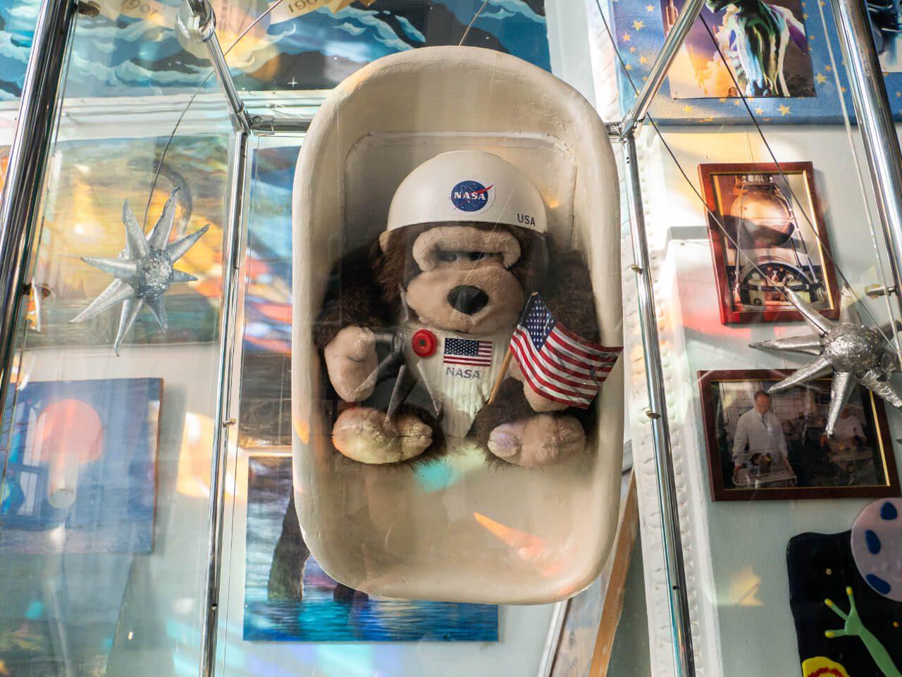 Pluszak w Planetarium Gagarina w Charkowie