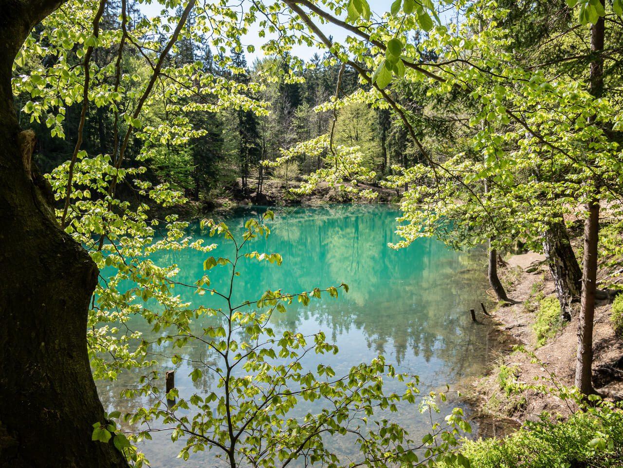 drzewa szlak niebieskie błękitne jeziorko rudawy janowickie