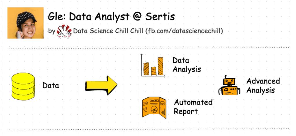 data analyst task