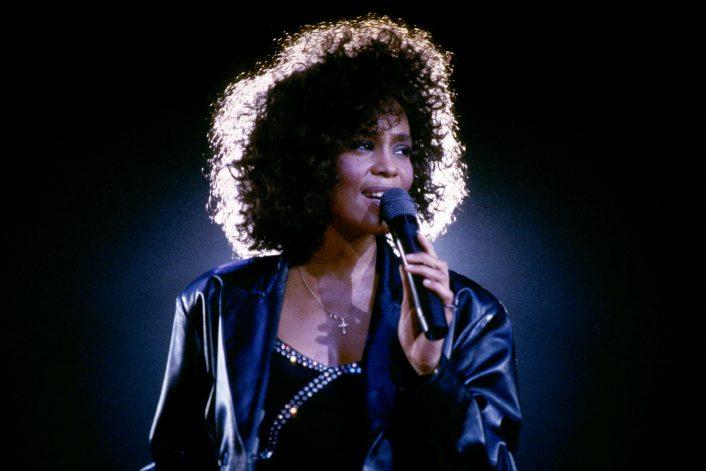 Заказать The Whitney Houston Hologram Tour на корпоратив, свадьбу, День города в букинг-агенстве BnMusic