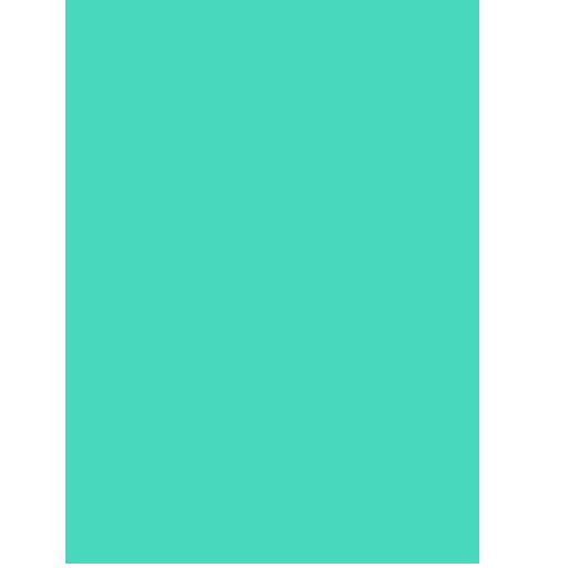 Brightflag icon