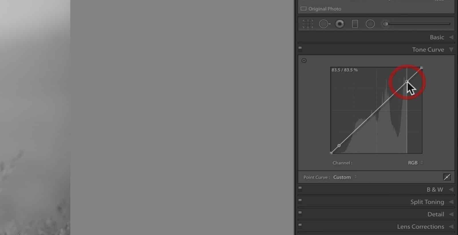Changing Tones Through Curve - CreativeRAW