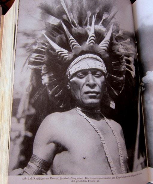 Kopfjäger - Neu-Guinea - Neue große Völkerkunde