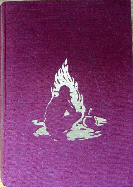 An Lagerfeuern deutscher Vagabunden - Buch
