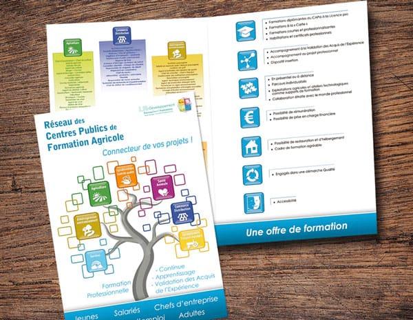 Réseau des CFA-CFPPA