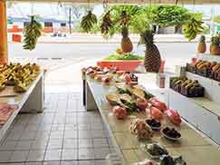 Овощи и фрукты Мексики: экзотические и известные представления