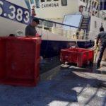 Malestar en la flota de bajura por la presencia de arrastreros europeos en la costera