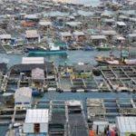 Sube a 630 millones las personas que deberán migrar por el aumento del nivel del mar en el 2100