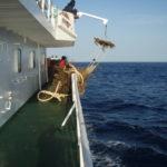 FADs biodegradables y no enmallantes para una flota atunera sostenible