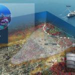 AZTI ha llevado a cabo un proyecto de mejora de la selectividad del arrastre