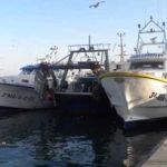 El arrastre del Mediterráneo ve con preocupación el recorte de los días de pesca