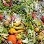 Euskadi lidera la campaña contra el desperdicio alimentario