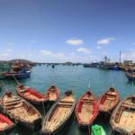 Vietnam espera ganar 9000 millones dólares en sus exportaciones de productos del mar