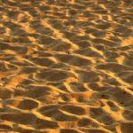 Las arenas,  en peligro de extinción