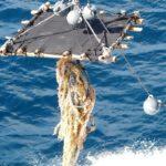La pesca de atún será más sostenible con los buenos resultados de los FADs biodegradables y no enmallantes plantados