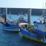 La rentabilidad económica de la flota de la UE alcanzó los 1.400 millones de euros