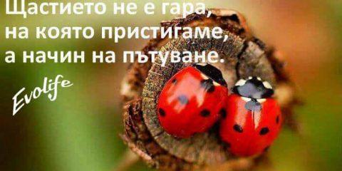 evolife.bg-shtastieto-ne-e-gara-na-koqto-da-pristignesh-a-nachin-na-patuvane