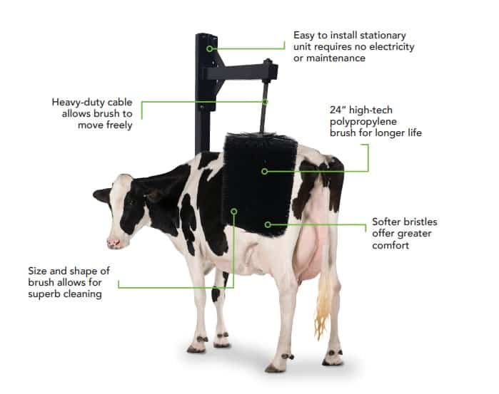 FutureCow Stationary Cow Brush