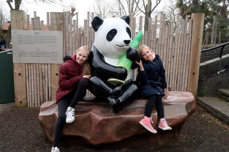 London Zoo 2018