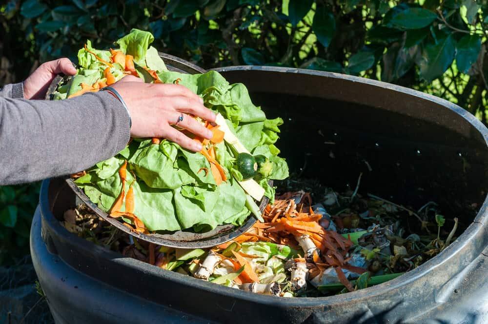 Create a compost heap