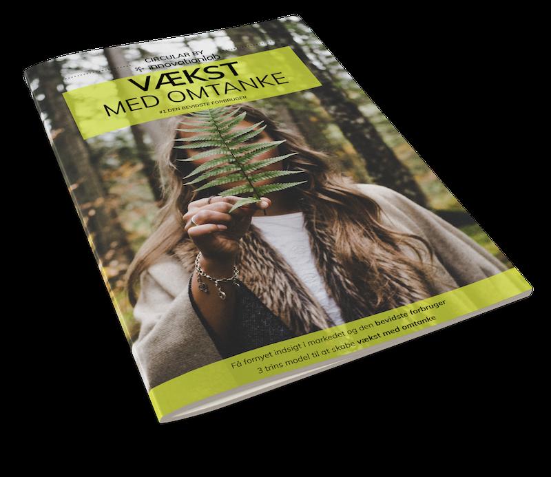 E-bog om bæredygtig økonomi og vækst