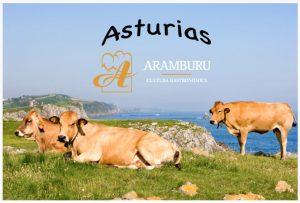 iumm_aramburu_asturias