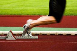 Wie kann ich aus dem Executive Coaching das Meiste herausholen?