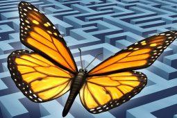 7 Führungsprinzipien, die agile Führung leichter machen