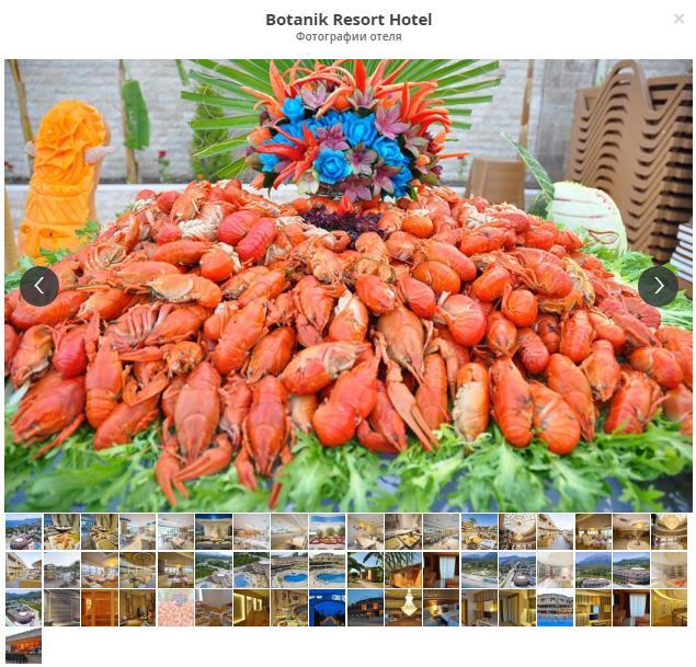 Турция, Кемер, Botanik Resort Hotel 4*