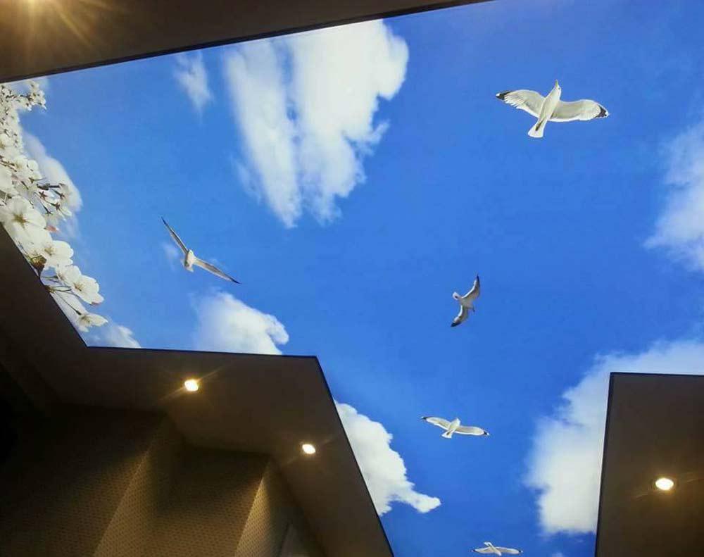 Пример использования 3D обоев на потолках
