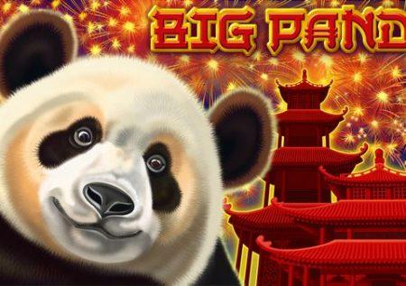 Panda grande