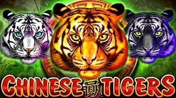 Kineski tigrovi