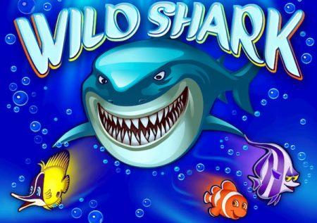 Cá mập hoang dã