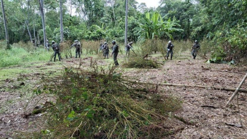 Militares colombianos investigan denuncia de incursión del ejército ecuatoriano en Putumayo