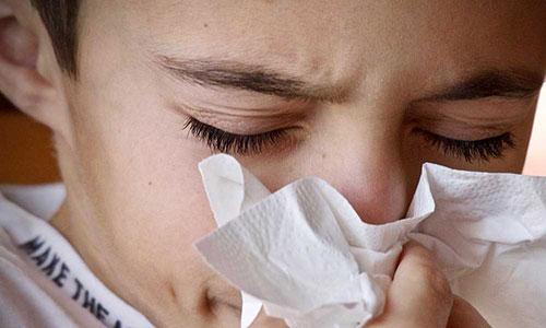 Allergia respiratoria