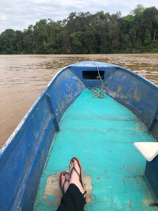 View from our boat on the Kinabatangan River.