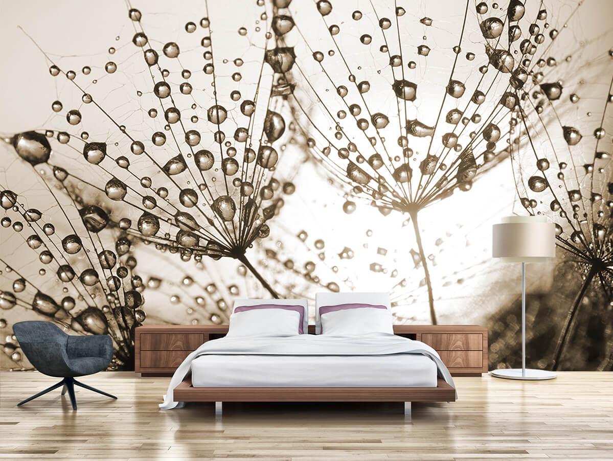 Aranżacja sypialni - Fototapeta Dmuchawce - W kroplach rosy