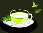 Best Decaf Green Tea