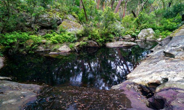 Barden Ridge