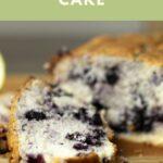 blueberry cake pin
