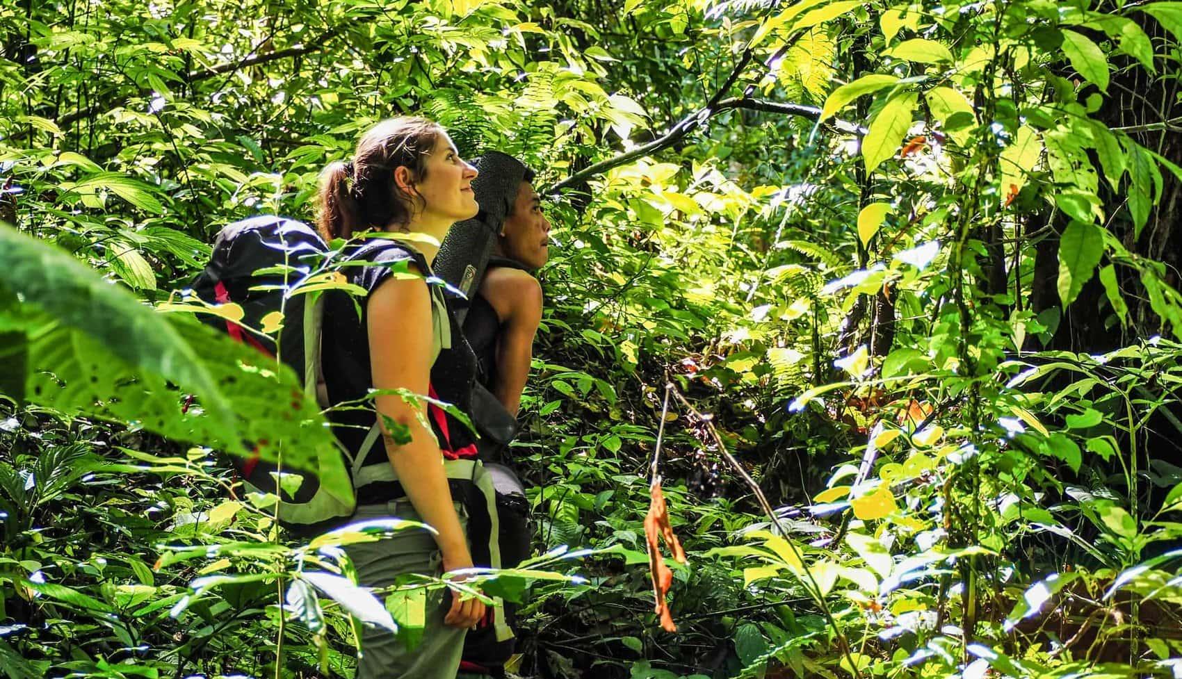 trek jungle sumatra