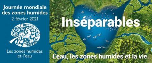 Journée internationale des zones humides jusqu'au 28 février 2021