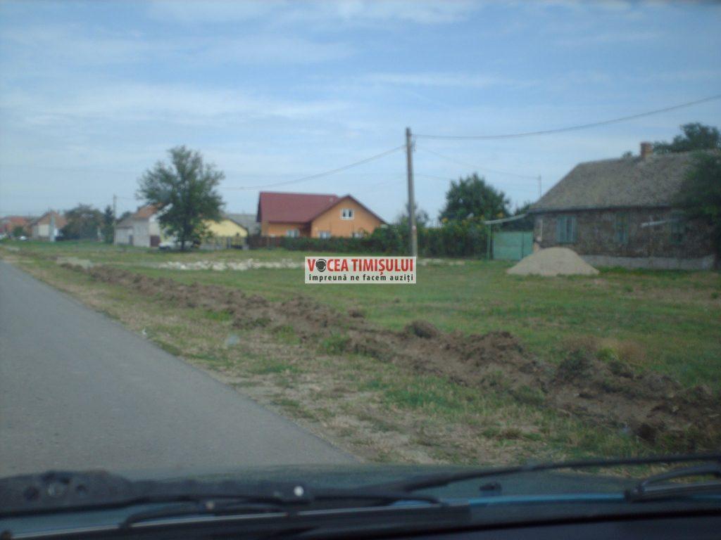 Misiune-imposibilă-la-Primăria-Sânnicolau-Mare-@03