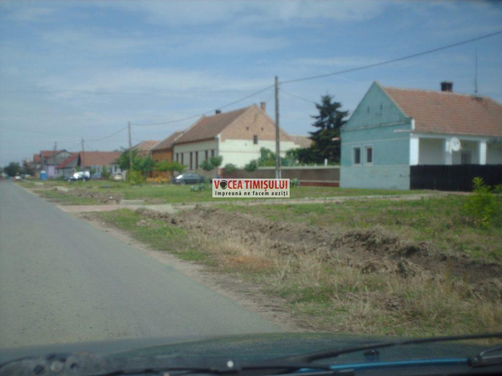 Misiune-imposibilă-la-Primăria-Sânnicolau-Mare-@06