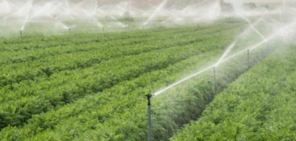irrigazione pieno campo