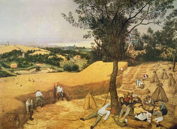 Mietitura (Bruegel)