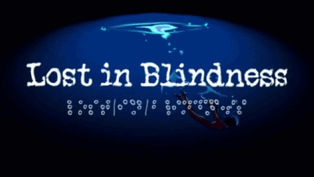 Information sur le jeu : Lost in Blindness.