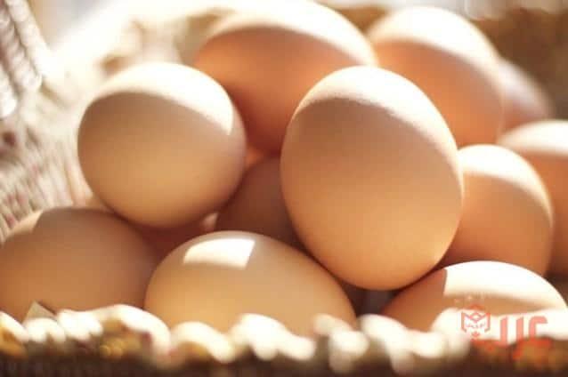 البيض في المنام