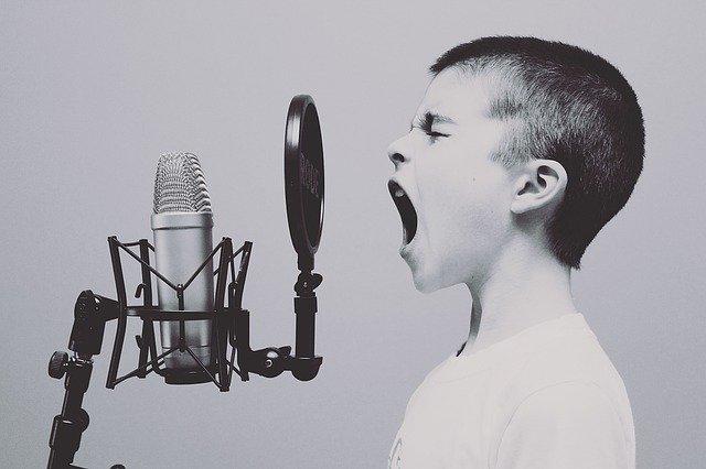 zang gehoorbescherming banaan in je oor