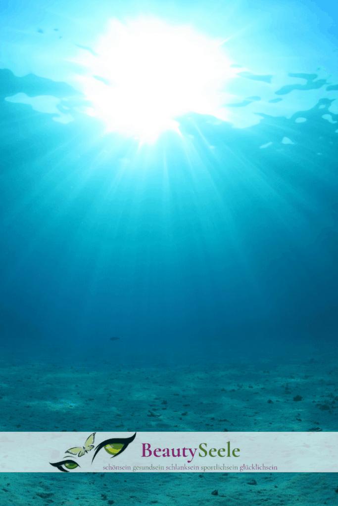 Nachhaltiges Fischöl